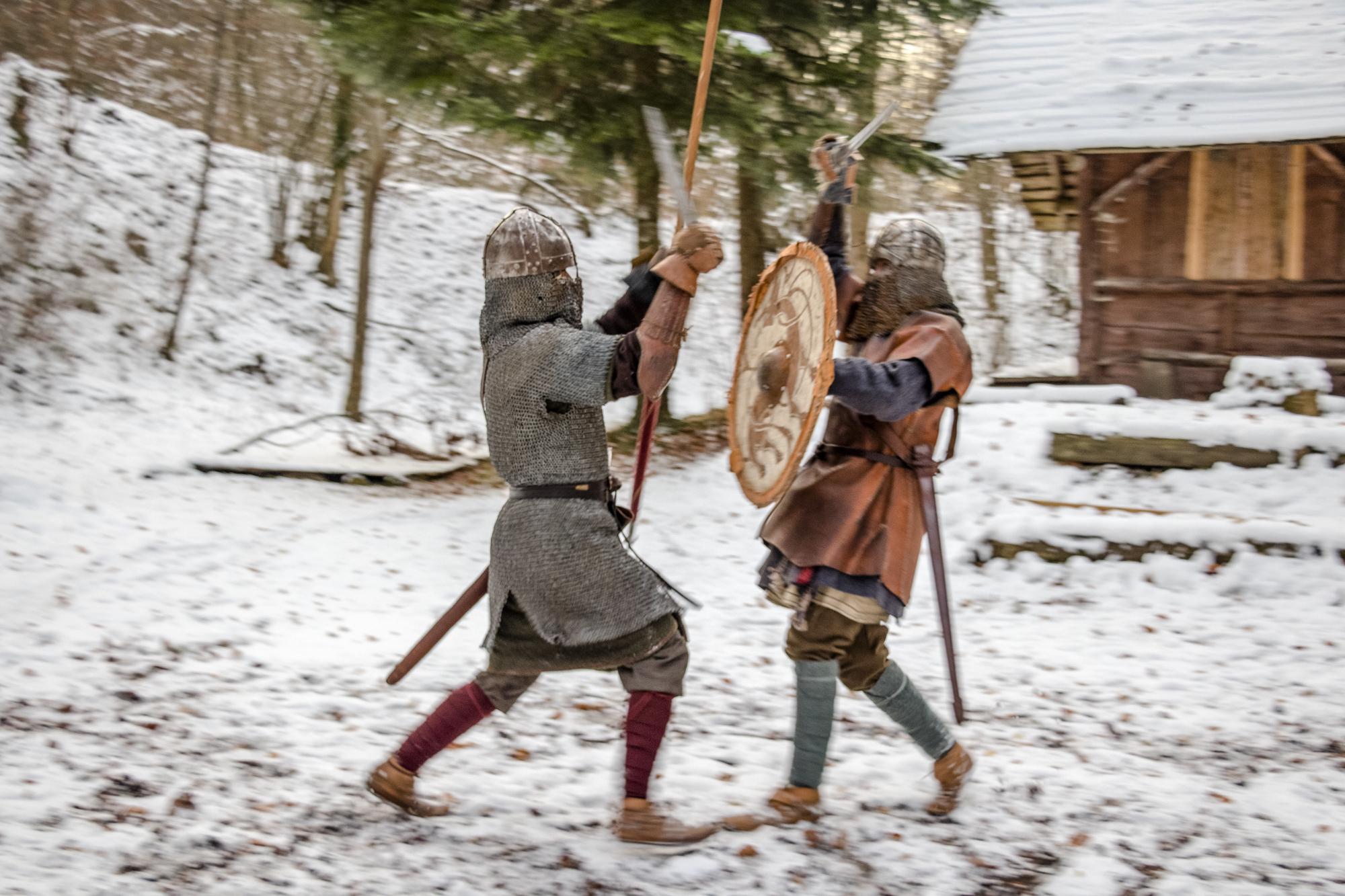 Vikings Fribourg