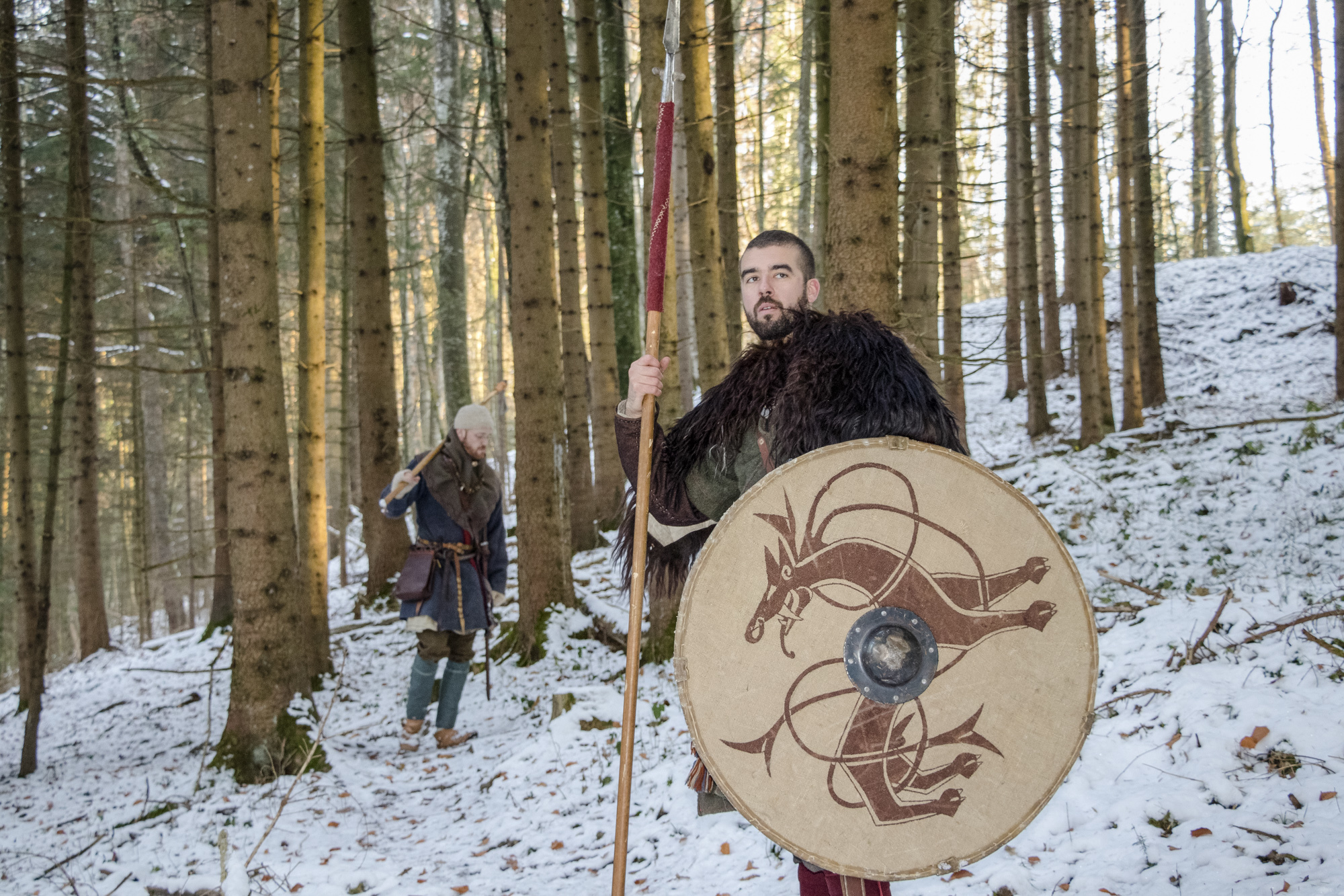 Vikings Fribourg
